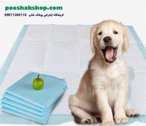 استفاده از پد های بهداشتی برای حیوانات